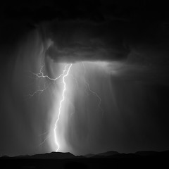 Lightfall (agavephoto) Tags: longexposure light shadow sky blackandwhite storm motion mountains newmexico fall nature rain weather night clouds dark square landscape movement nightscape desert natural wind branches tag flash gravity le monsoon bolt electricity strike abstraction lightning simple thunder morelighting