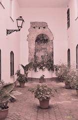 Pozo del antiguo Mesón Ducal - La Tahona de Conil de la Frontera