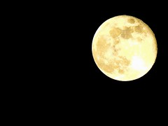 Once in a blue moon! (Cryssle-bee) Tags: sky moon nature night nikon trinidad coolpix caribbean