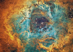 A Rose (NGC2237 in Hubble Palette) (Terry Hancock www.downunderobservatory.com) Tags: camera sky monochrome night stars photography mono pier back backyard fotografie photos thomas space shed science images astro apo m observatory telescope nebula astrophotography astronomy imaging ccd universe rosette cosmos palette paramount hubble luminance hst lodestar sii teleskop astronomie byo oiii refractor deepsky f55 monoceros halpha ngc2237 narrowband astrograph autoguider starlightxpress tmb92ss caldwell49 mks4000 gt1100s qhy9m