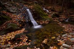 Tannery Falls (markvcr) Tags: autumn usa fall leaves ma waterfall massachusetts savoy supershot tanneryfalls