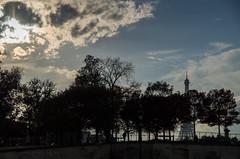 Eiffel Tower seen from the Tuileries garden - Paris