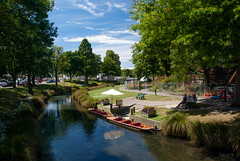 new trees christchurch sky people clouds buildings reflections river shadows cranes zealand nz punting avon punts avionriver