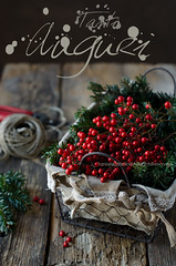 Christmas is Here! (Tania-Dulcis in Furno) Tags: christmas wood red brown tree verde green vintage iron berries basket scissors fir string abete natale bacche rosso filo marrone legno ferro spago forbici cestino punnet