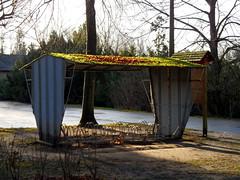 Fahrradständer im Botanischen Volkspark Pankow (onnola) Tags: sun berlin germany deutschland stand moss laub rack sonne gwb moos bycycle fahrradständer guesswhereberlin guessedberlin gwbthmlamp wellbleck