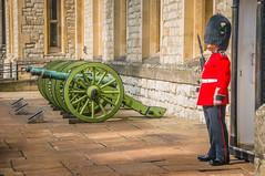 London Tower Guard (Steven Johnson Photography) Tags: england london castle guard cannon
