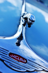 IMG_2713 (Geckoo76) Tags: cars austin riley rollsroyce mini rover cadillac mg porsche triumph jaguar morris morgan westfield oldtimers sunbeam classiccars automobiles bentley alvis wolseley