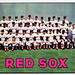 Red Sox Team 1966