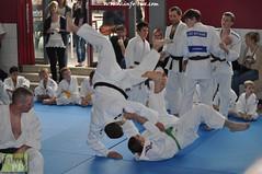 Judo-habay075