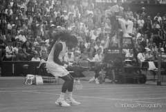 Dustin Brown | TrinDiego (TrinDiego) Tags: england brown green grass dreadlocks germany lawn tennis german jamaica dustin wimbledon rasta sw19 rastafarian centrecourt dustinbrown trindiego