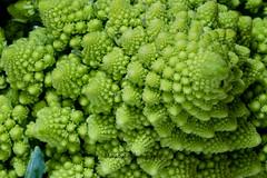 Union Square Greenmarket (MikaJC) Tags: nyc green farmersmarket greenmarket veg unionsquare romanescobroccoli romancauliflower