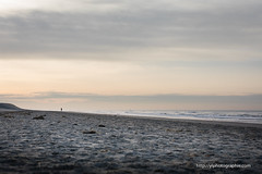 immersion (ylemort) Tags: sea seascape beach belgique belgium beautiful zee nordzee mer merdunord canon canon5dmkiv people photography