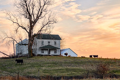 Old Abandoned Farmhouse on a Hill (SteveFrazierPhotography.com) Tags: farm house abandoned old sun winter illinois il farming farmland agriculture rural country countryside landscape outdoor evening sunset stevefrazierphotography chili beautiful cattle cows hilltop ditch grainbins tree weathered vintage historic historical yesteryear hancockcounty township