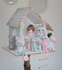 Minty & Pinky ^^ (cachoou) Tags: dolls bjd depthsdolls deilf enaibi carmalyne kinokojuice haine nia mewiefish feldspathe radis cocoriang tobi