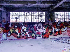 Raskoe Jane (The Razmatazz) Tags: blue red urban canada building sexy abandoned broken window beer look dead grey graffiti back weed paint day colours grafitti pieces jane quebec montreal character treats spray awsome pack roller ta pice skill pouty gesa raskoe enoma
