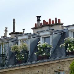 pretty Paris (Chantal van der Ende-Appel) Tags: paris rooftops forumdeshalles