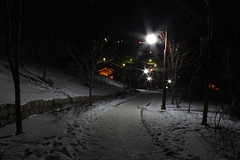 Memories (ryanhsuh31) Tags: snow night path korea seoul southkorea