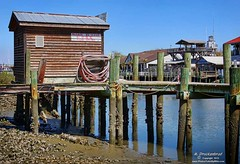 Dock at low tide on Shem Creek, Mount Pleasant South Carolina (PhotosToArtByMike) Tags: sc fishing mountpleasant southcarolina charleston seafood lowtide lowcountry oldvillage seafoodrestaurant waterfrontrestaurant shemcreek