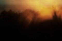 noFear (niK10d) Tags: trees sunset cloud manual pentaxk10d asahitakumar135mmf25
