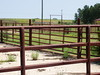 "Cattle Pens • <a style=""font-size:0.8em;"" href=""http://www.flickr.com/photos/81807462@N03/9472212413/"" target=""_blank"">View on Flickr</a>"