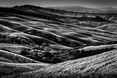 Toscana em Preto e Branco (Luis Fernando Barp) Tags: italy europa europe italia tuscany toscana cretesenese