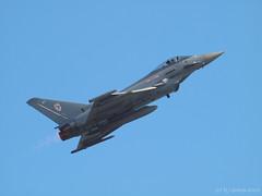 Typhoon 5 (ExeDave) Tags: uk england geotagged fighter display aircraft military transport jet august aeroplane airshow devon solo eurofighter gb combat typhoon raf squadron dawlish 29r displayteam multirole 2013 teignbridge leamount fgr4 moreorlessastaken zk306 p8243355 geo:lat=50576601775035684 geo:lon=346784345805645
