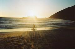 (teacup_dreams) Tags: beach big sur pfeiffer