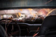 Fleming's Auto Salvage (ecajoe) Tags: auto car vintage automobile pumpkinrun junkyard flemings junkcars flemingsautosalvage