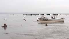 White boat (radimersky) Tags: camera white lake water landscape boats countryside boat europa europe sony poland polska cybershot woda compact ld d dka jezioro biaa krajobraz icebound odzie icecovered pejza turawa turawskie zamarznite dschx9v
