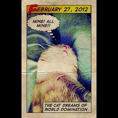 Dream Big (WestKastle) Tags: cat comics cartoon dreaming
