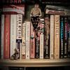18... the waiting game... (w3inc / Bill) Tags: alex miniature nikon books 365 conceptual hss d90 w3inc happysliderssunday joelrobison 2014365photos