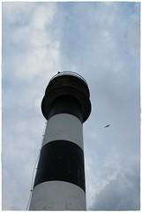 Faro y pareja de gaviotas. (margabel2010) Tags: espaa asturias aves nubes gaviotas estructuras faros vuelos cieloytierra