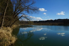 DSC01646 (***Images***) Tags: river bayern inn mygearandme esenciadelanaturaleza ringexcellence flickrtravelaward