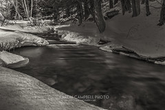 Upstream, 2014.02.23 (Aaron Glenn Campbell) Tags: winter snow motion blur ice water sepia rural reflections woods stream pennsylvania country sunday tint textures slowshutter february 23rd hdr nepa wooded toning 2014 creekbed edr luzernecounty ricedam jacksontownship
