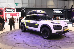 Citroen Cactus Adventure