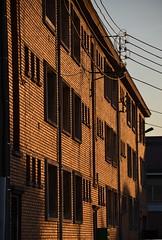 Evening Sun on Cartoon City (Jean-Luc Lopoldi) Tags: windows sunset lumire bricks faade immeuble briques fentres orang filslectriques soleilcouchant