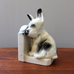 Tired Terrier. (Kultur*) Tags: dog white cute animal vintage book bottle gray decoration retro terrier 1950s kawaii end decor homedecor bookend