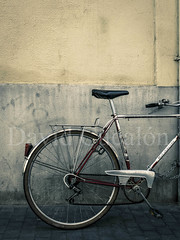 Antique Bicycle (David Cucaln) Tags: barcelona life city urban david color art bicycle wall pared still low fine ciudad bicicleta fujifilm urbano paret urba x20 fineartphotography ciutat 2014 naturalezamuerta desaturado cucalon davidcucalon fujifilmx20
