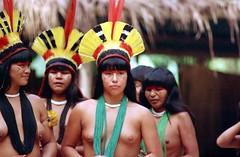 Agfa Vista 200 (PauloMagooFilm) Tags: film 35mm nikon da indios agfa toca f601 raposa 300f4 2485 vista200 kuikuru paulomagoo