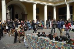 La Pituca, Ramada Histórica en MHN