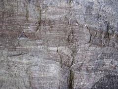 Liesegang banding in quartzite (Baraboo Quartzite, upper Paleoproterozoic, ~1.7 Ga; Tumbled Rocks Trail, Devil's Lake State Park, Wisconsin, USA) 4 (James St. John) Tags: park lake rocks iron state south devils trail bands ranges range quartzite baraboo banding oxide precambrian tumbled liesegang paleoproterozoic proterozoic