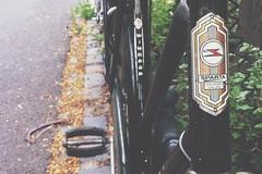 Sparta Windsor (fl1m) Tags: holland netherlands dutch bike bicycle head rad nederland nostalgia badge windsor sparta velo fahrrad nostalgie apeldoorn fiets velocipede gelderland headbadge omafiets hollandrad rijwiel
