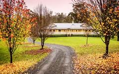 Lot 19/100 Nectarbrook Drive, Theresa Park NSW