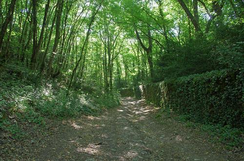 Esvres ou Esvres-sur-Indre (Indre-et-Loire)
