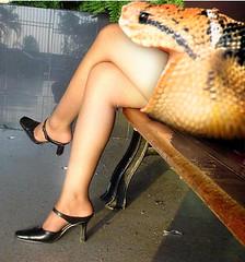 Snake1 (tallteeth711) Tags: vore feet fetish legs damsel vorevids shoop snake fishvore toes nylons stockings