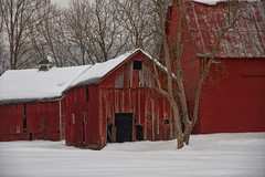 Quiet Snow (SunnyDazzled) Tags: history delawarewatergap national recreationarea snow winter red evening rural farming empty abandoned cold scenery quiet outdoor oldmineroad newjersey