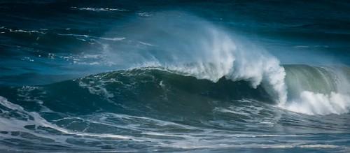 Blue Wave Tails