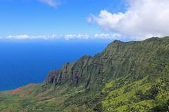 Nāpali Coast State Wilderness Park (russ david) Tags: nāpali coast state wilderness park kauai september 2016 hi ハワイ 風景 pu'u o kila pihea trail hike pacific hawaii