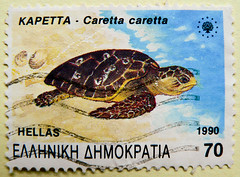 great stamp Hellas Greece 70d Loggerhead sea turtle (Caretta caretta, Unechte Karettschildkröte, Meeresschildkröte, καρέττα, La Caouanne, 赤蠵龜, Álcserepesteknős, アカウミガメ, La tartaruga comune, Tartaruga-comum, La tortuga boba) poste timbres Grèce bolli selos (stampolina, thx for sending stamps! :)) Tags: greece griechenland grèce grecia 希腊 xīlà греция stamps hellas stamp timbres timbre porto postage briefmarken sellos selos franco bolli francobolli postes antspaudai frimerker znaczki znamk pulları แสตมป์ markas turtle schildkröte loggerheadseaturtle carettacaretta unechtekarettschildkröte meeresschildkröte καρέττα caouanne 赤蠵龜 álcserepesteknős アカウミガメ tartarugacomune tartarugacomum tortugaboba tortue سلحفاة 龟 龜 skildpadde kilpkonn pagong kilpikonna χελώνα צָב कछुए penyu tartaruga カメ 터틀 kornjača vėžlys schildpad skilpadde черепаха sköldpadda želva kaplumbağa teknősbéka rùa