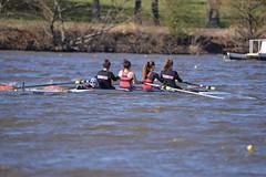ABS_0098 (TonyD800) Tags: steveneczypor regatta crew harritoncrew copperriver rowing cooperriver